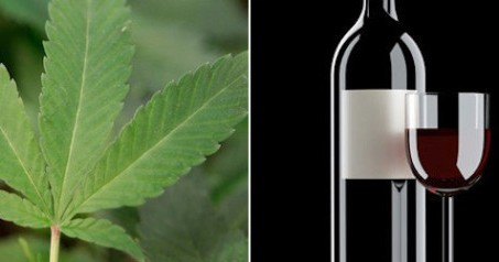 regulate marijuana like wine essay