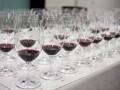 Science Briefs: More diversity needed in wine yeast