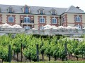 Domaine Carneros Sued Over Vineyard Name