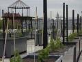 New York rooftop vineyard plots first vintage