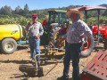 Tales From the Dry Farmed Vineyard