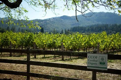 SPOTTSWOODE ESTATE VINEYARD & WINERY HONORED  WITH THE 2017 GREEN MEDAL ENVIRONMENT AWARD